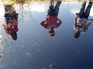 USD researchers at a vernal pool with fairy shrimp. Photo by Katie Davis.