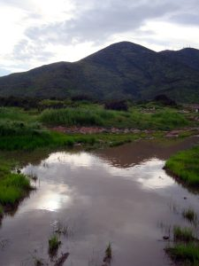 Original natural vernal pool in proctor valley on property owned by California Department of Fish and Game