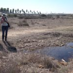 City of San Diego staff and interns map vernal pools on the Otay Mesa property.